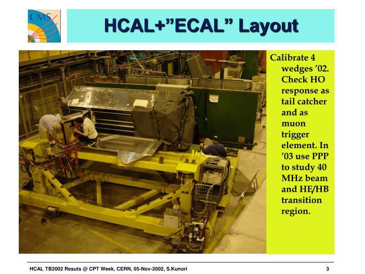 "HCAL+""ECAL"" Layout"