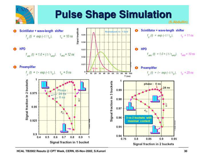 Pulse Shape Simulation