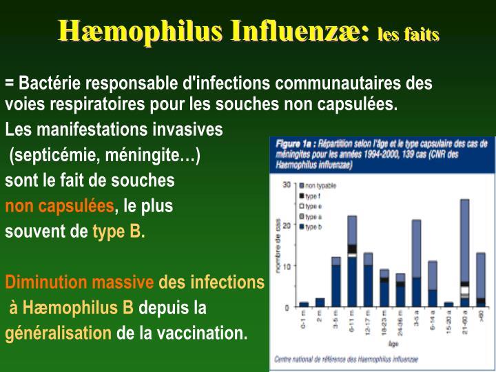 Hæmophilus Influenzæ: