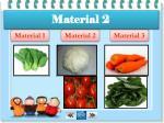material 21