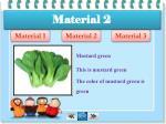 material 22