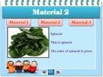 material 26