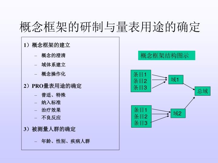 概念框架的研制与量表用途的确定