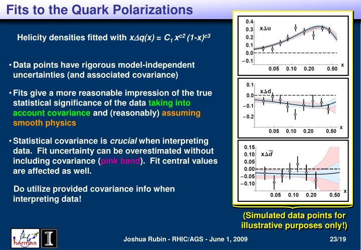 Fits to the Quark Polarizations