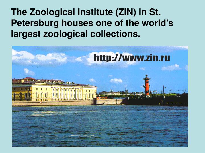 The Zoological Institute (ZIN) in St. Petersburg houses one of the world's largest zoological collections.