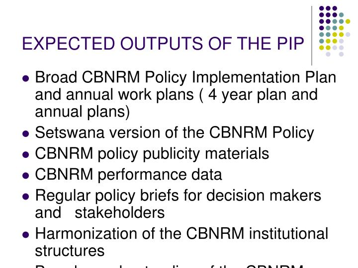 EXPECTED OUTPUTS OF THE PIP