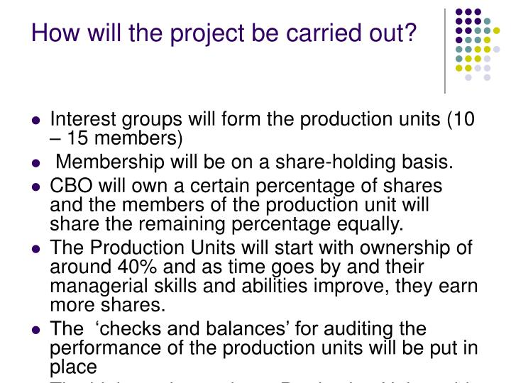 How will the project be carried out?