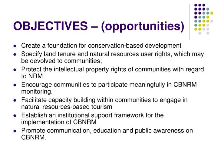 OBJECTIVES – (opportunities)