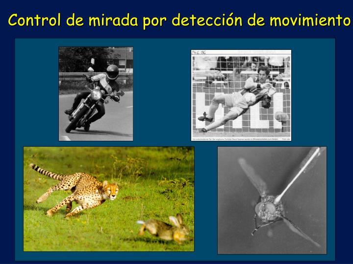 Control de mirada por detección de movimiento