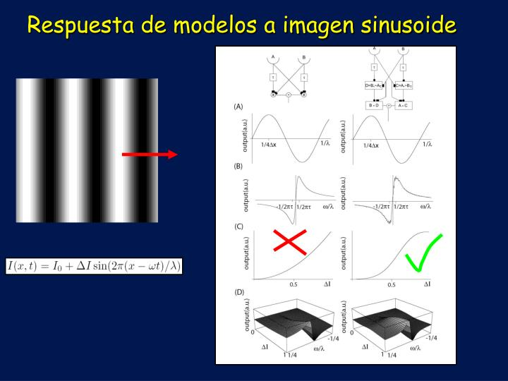 Respuesta de modelos a imagen sinusoide