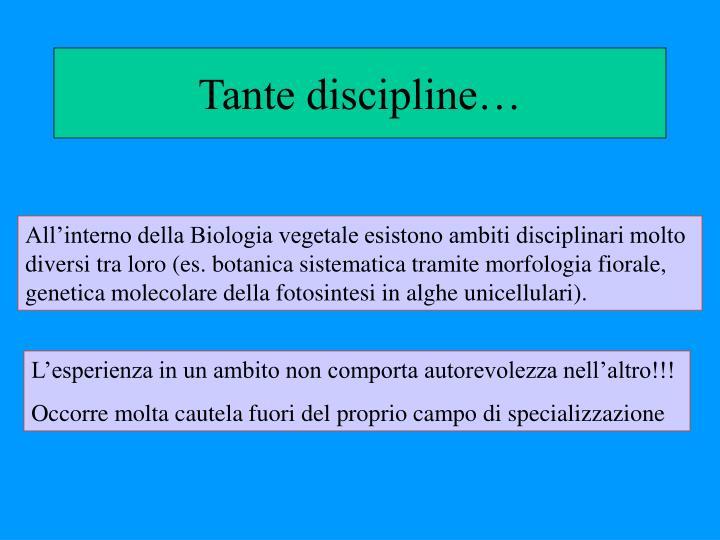 Tante discipline…
