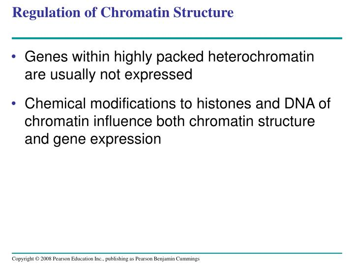 Regulation of Chromatin Structure