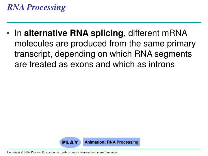 RNA Processing