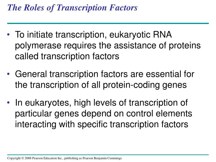 The Roles of Transcription Factors
