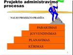 pro j e k t o administravimo procesas