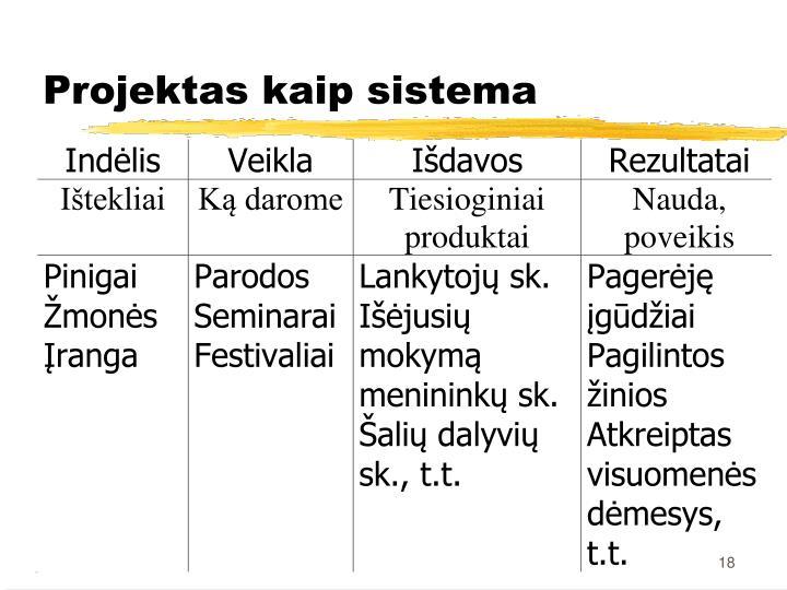 Projektas kaip sistema