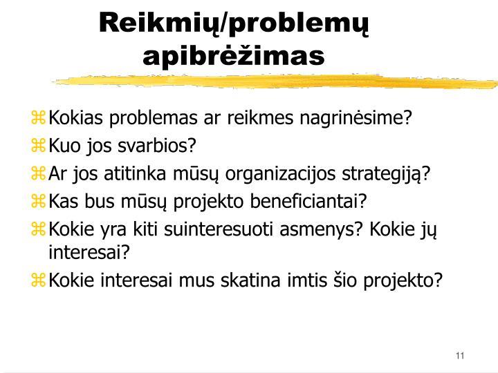 Kokias problemas ar reikmes nagrinėsime?