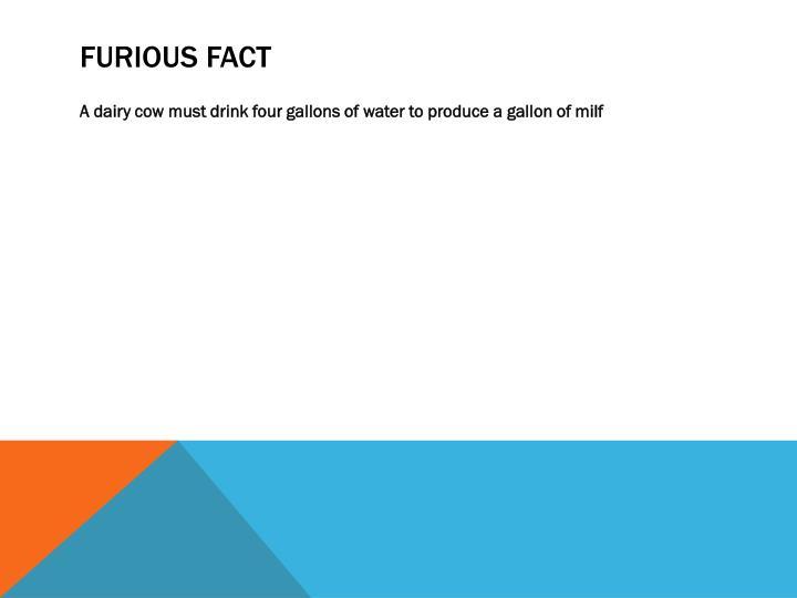 FURIOUS FACT