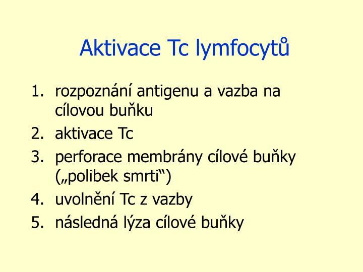Aktivace Tc lymfocytů