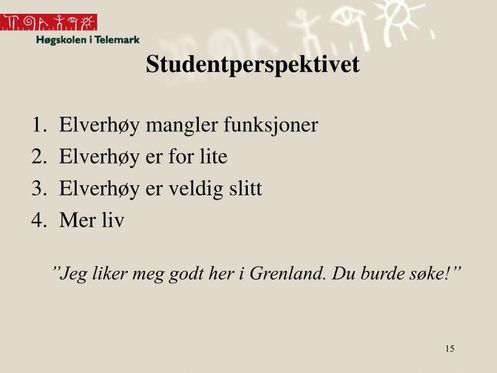 Studentperspektivet