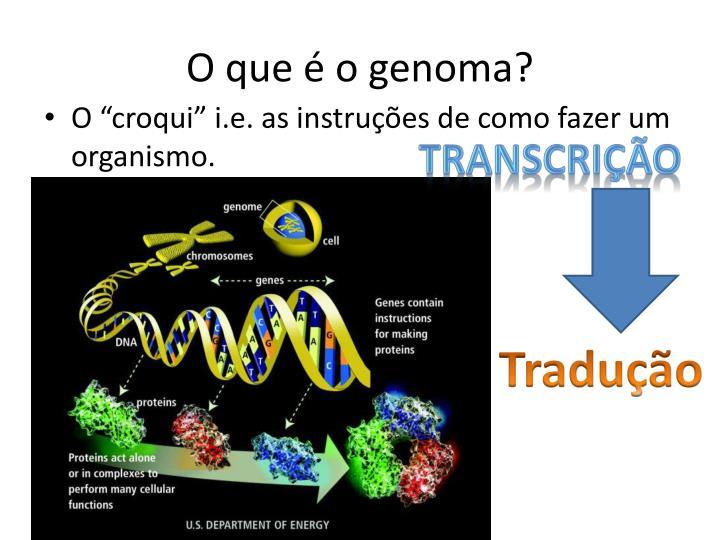 O que é o genoma?