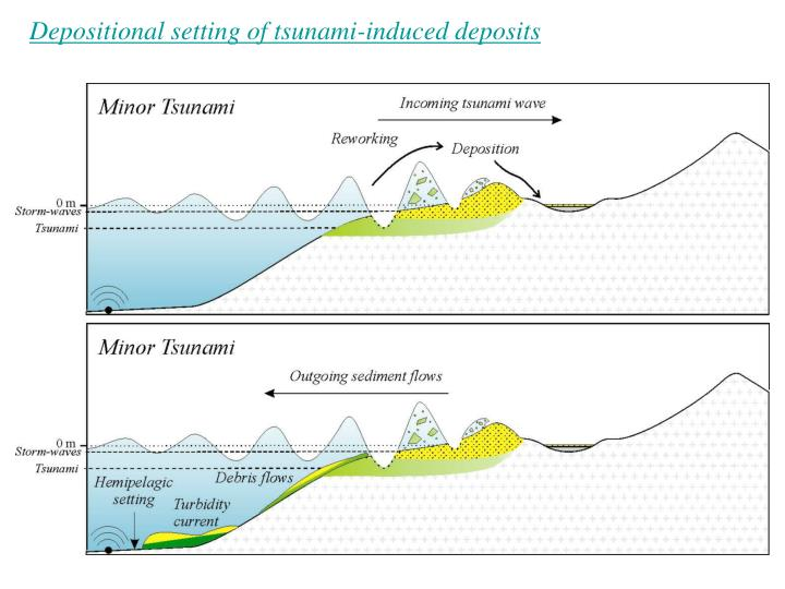 Depositional setting of tsunami-induced deposits