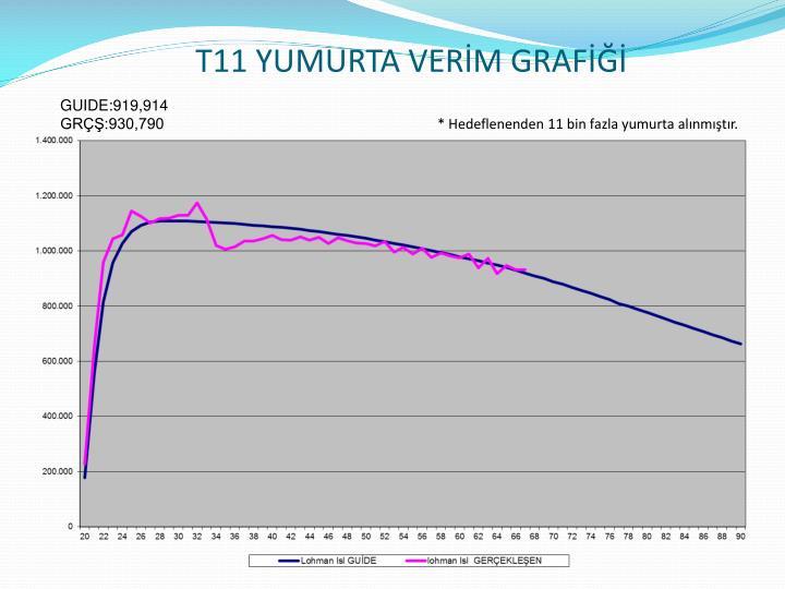 T11 YUMURTA VERİM GRAFİĞİ