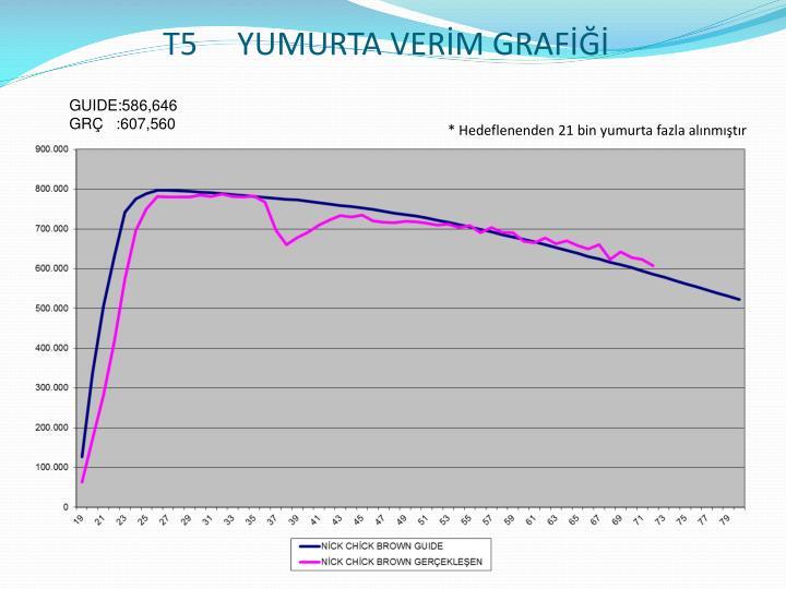 T5     YUMURTA VERİM GRAFİĞİ