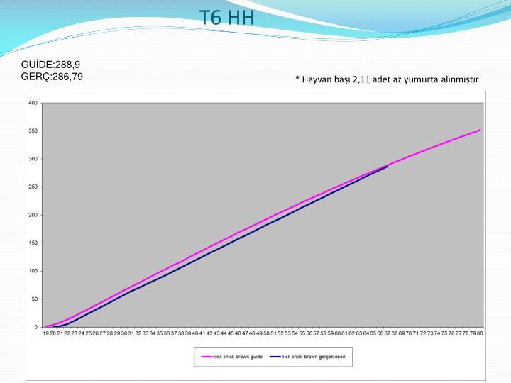 T6 HH