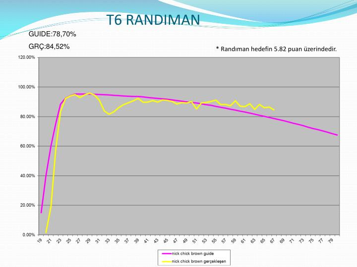 T6 RANDIMAN