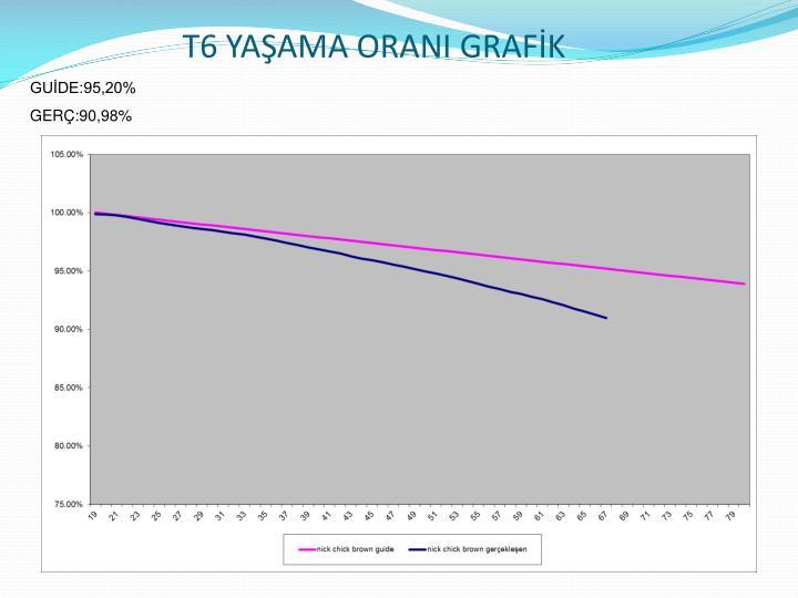 T6 YAŞAMA ORANI GRAFİK