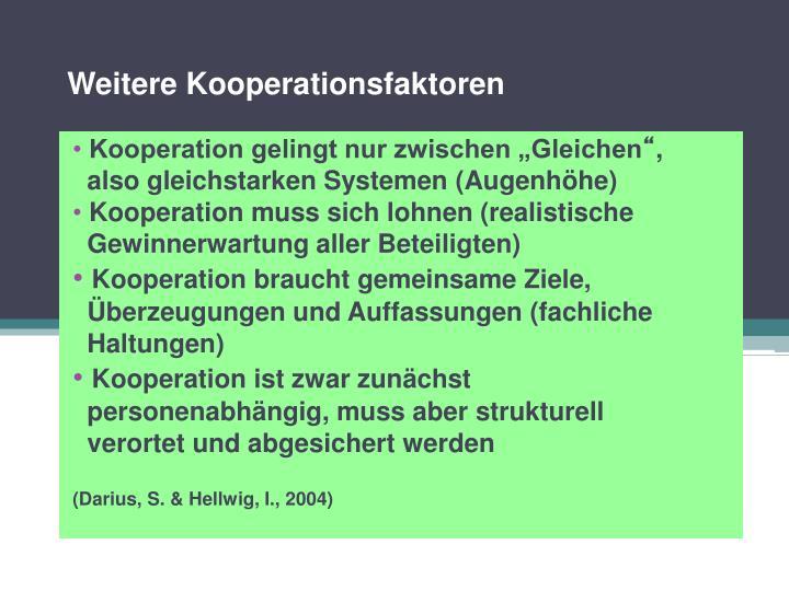 Weitere Kooperationsfaktoren