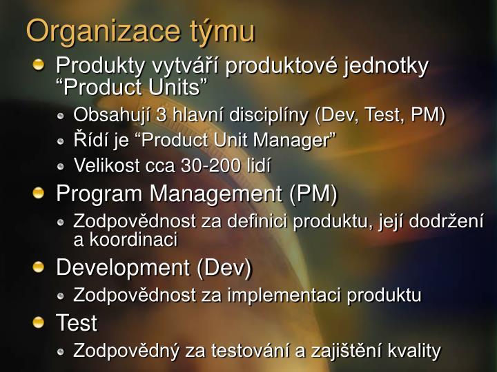 Organizace týmu