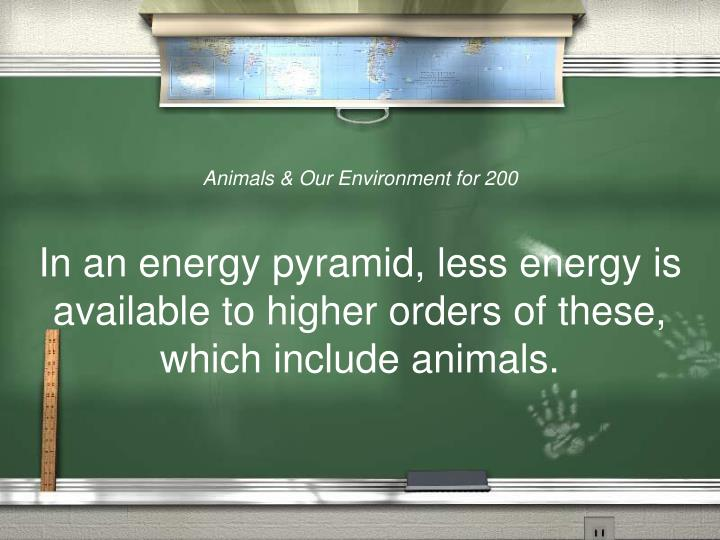 Animals & Our Environment for 200