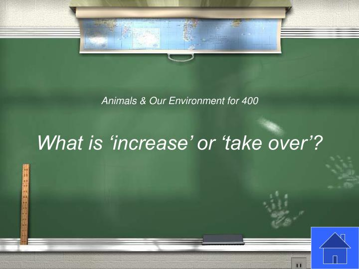 Animals & Our Environment