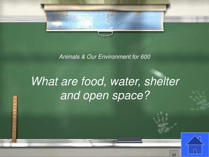 Animals & Our Environment for 600