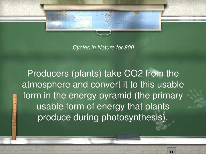 Cycles in Nature for 800
