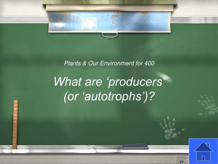 Plants & Our Environment for 400