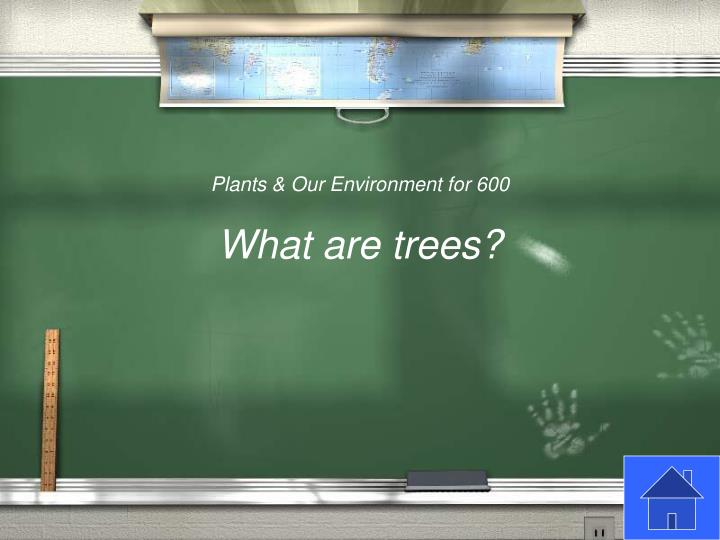 Plants & Our Environment for 600
