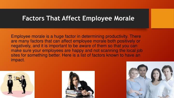 Factors That Affect Employee Morale
