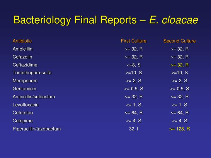 Bacteriology Final Reports –