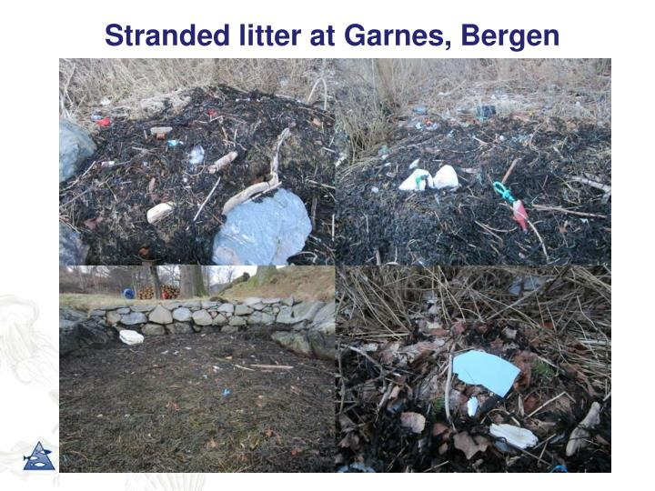 Stranded litter at garnes bergen