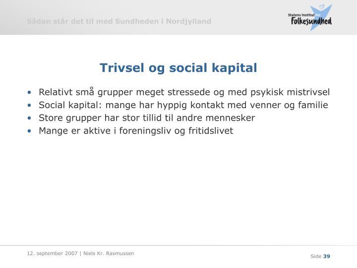 Trivsel og social kapital