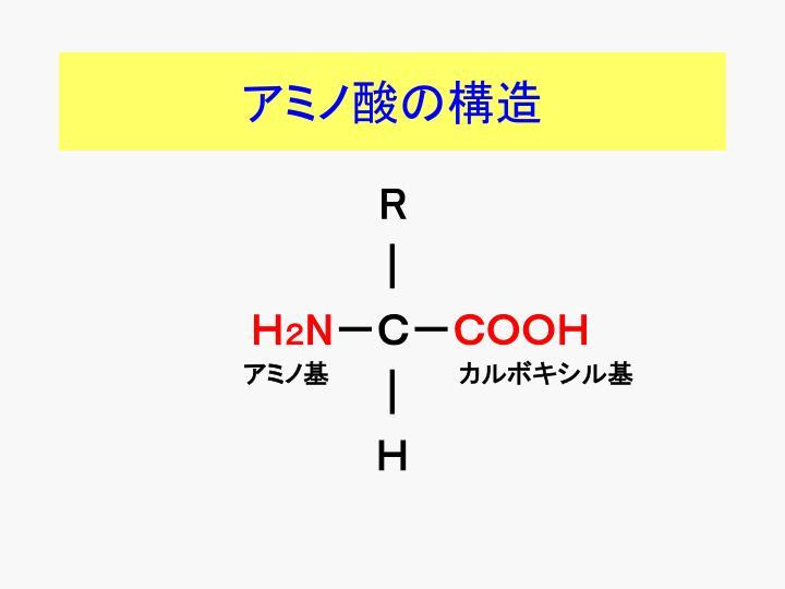 アミノ酸の構造