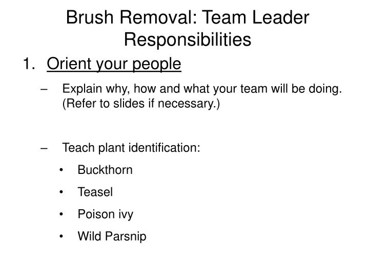 Brush removal team leader responsibilities