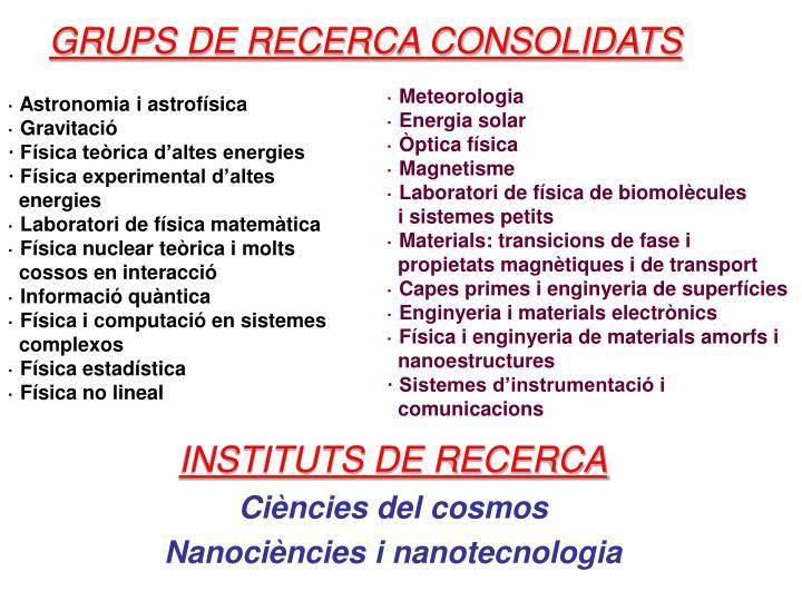GRUPS DE RECERCA CONSOLIDATS