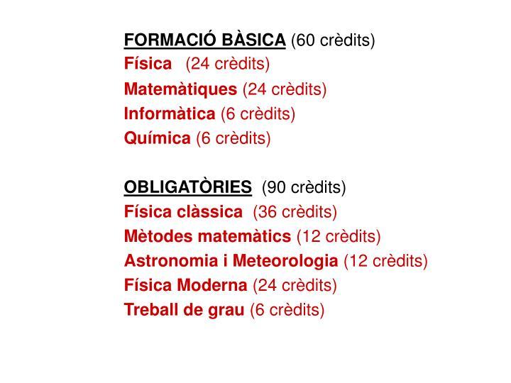 FORMACIÓ BÀSICA