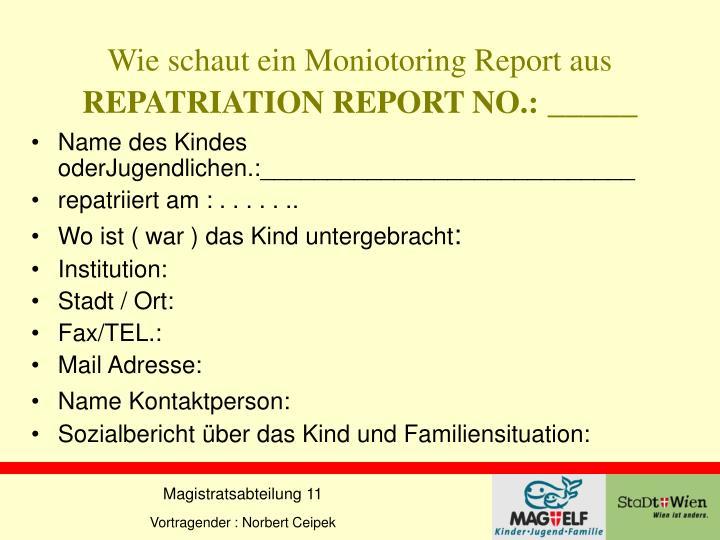 Wie schaut ein Moniotoring Report aus