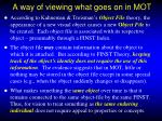 a way of viewing what goes on in mot