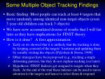 some multiple object tracking findings